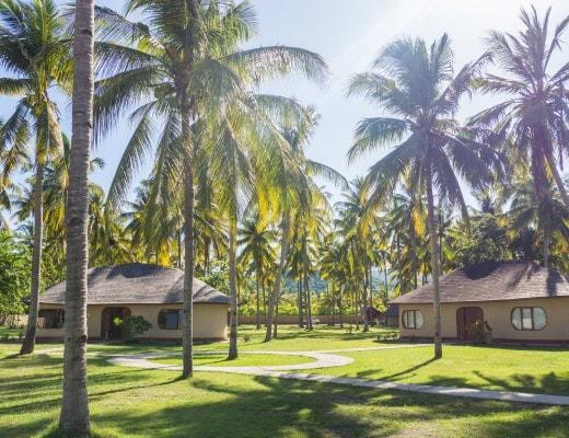Palm-Trees-Travel-Sumbawa-Kertasari