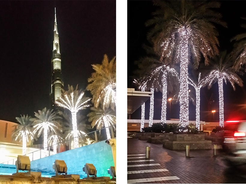 Burj Khalifa and palm trees at Dubai Mall by night