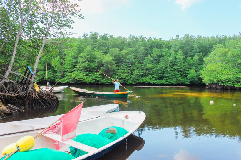 Explore Mangrove Forest Nusa Lembongan, Indonesia