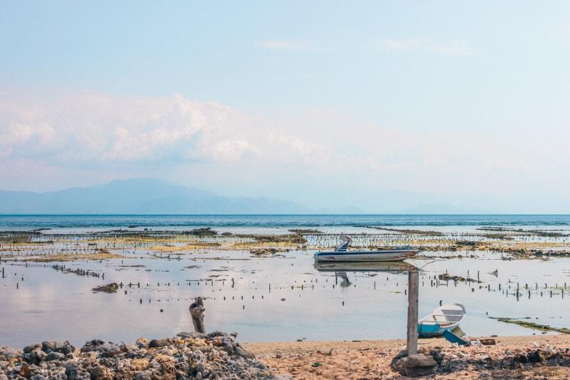 Seaweed farm on Nusa Lembongan, Bali