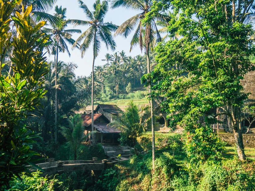 Pura Gunung Kawi - My favorite Bali attraction