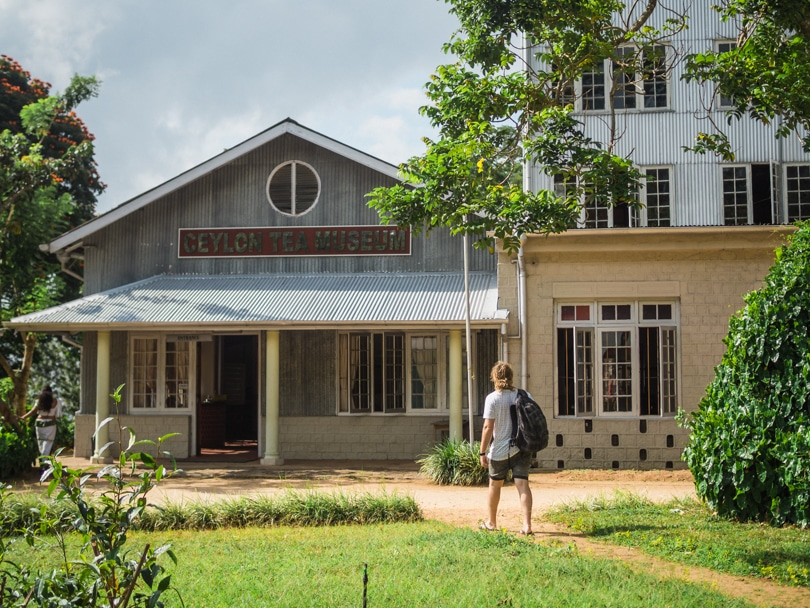 A quick guide to what to do in Kandy - Tea Factory Museum