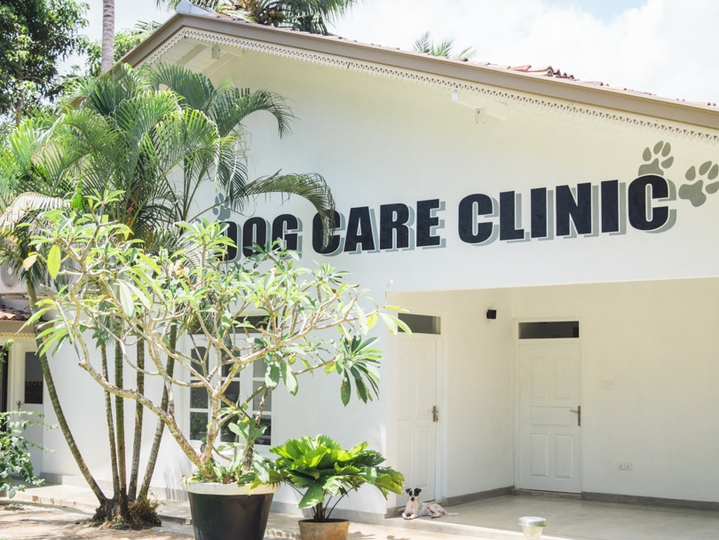 Dog Care Clinic, Mihiripenna / Talpe, Sri Lanka