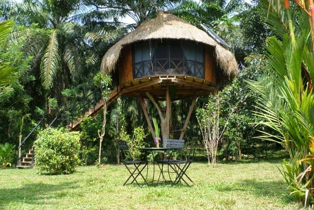7 best and affordable Airbnbs in Sri Lanka - Hikkaduwa