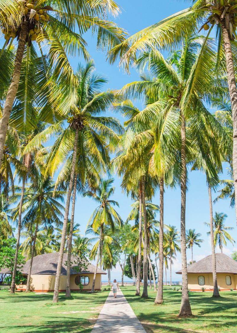 Favorite travel photos of 2016 - Sumbawa, Indonesia