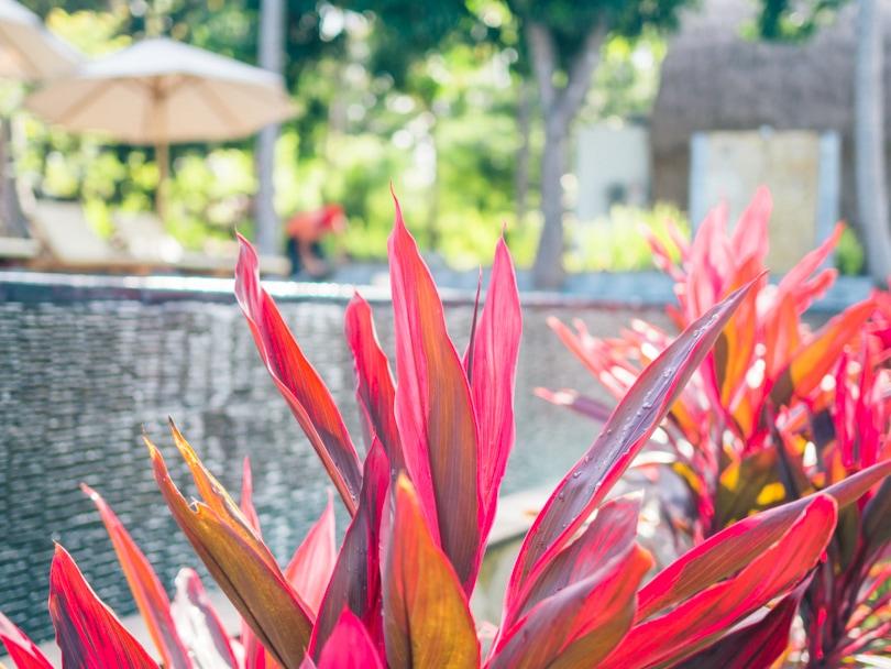 Nusa Penida best hotels - Bintang Bungalows