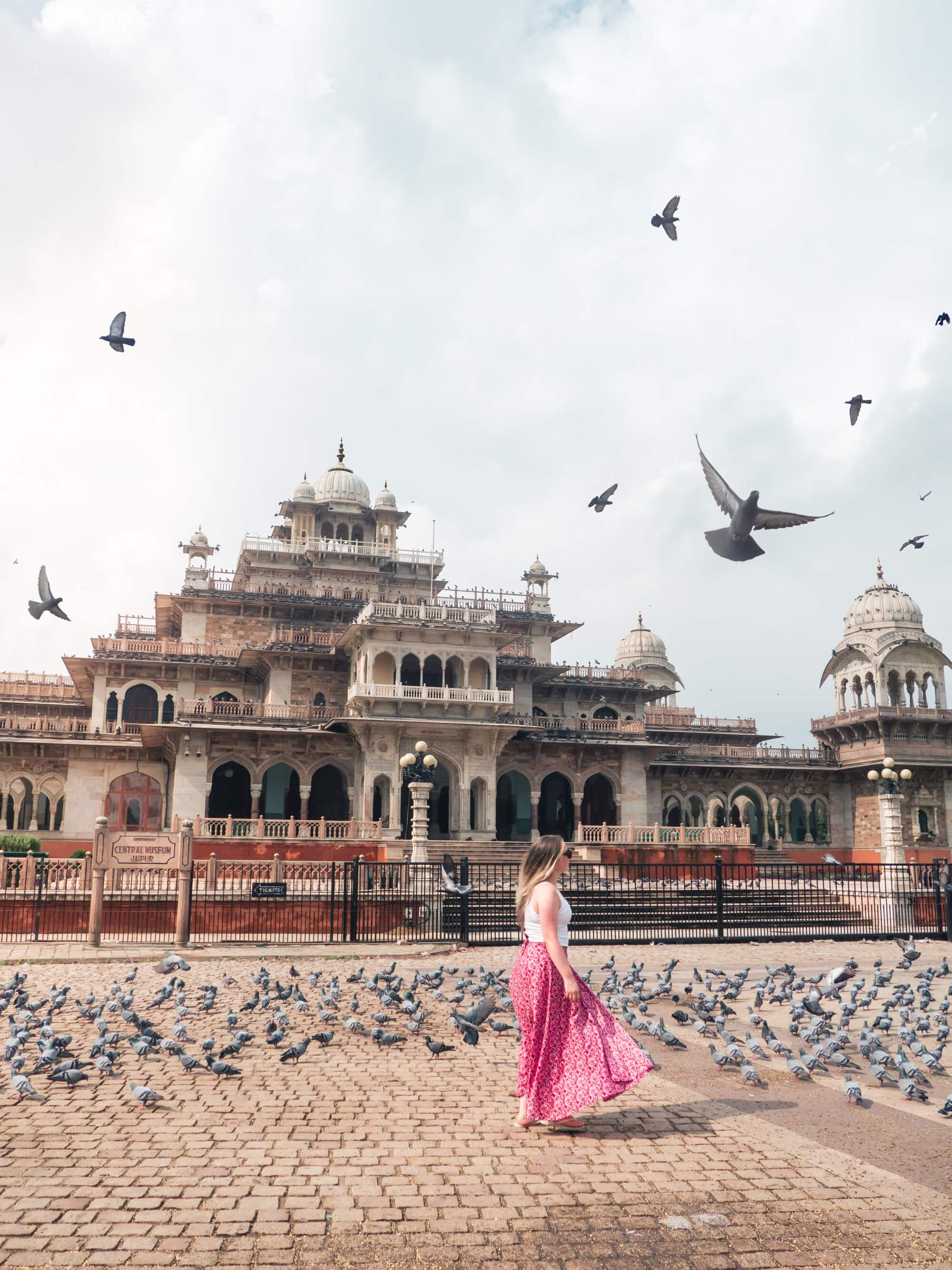 How to spend 2 days in Jaipur - A sea of pigeons in front of Albert Hall Museum