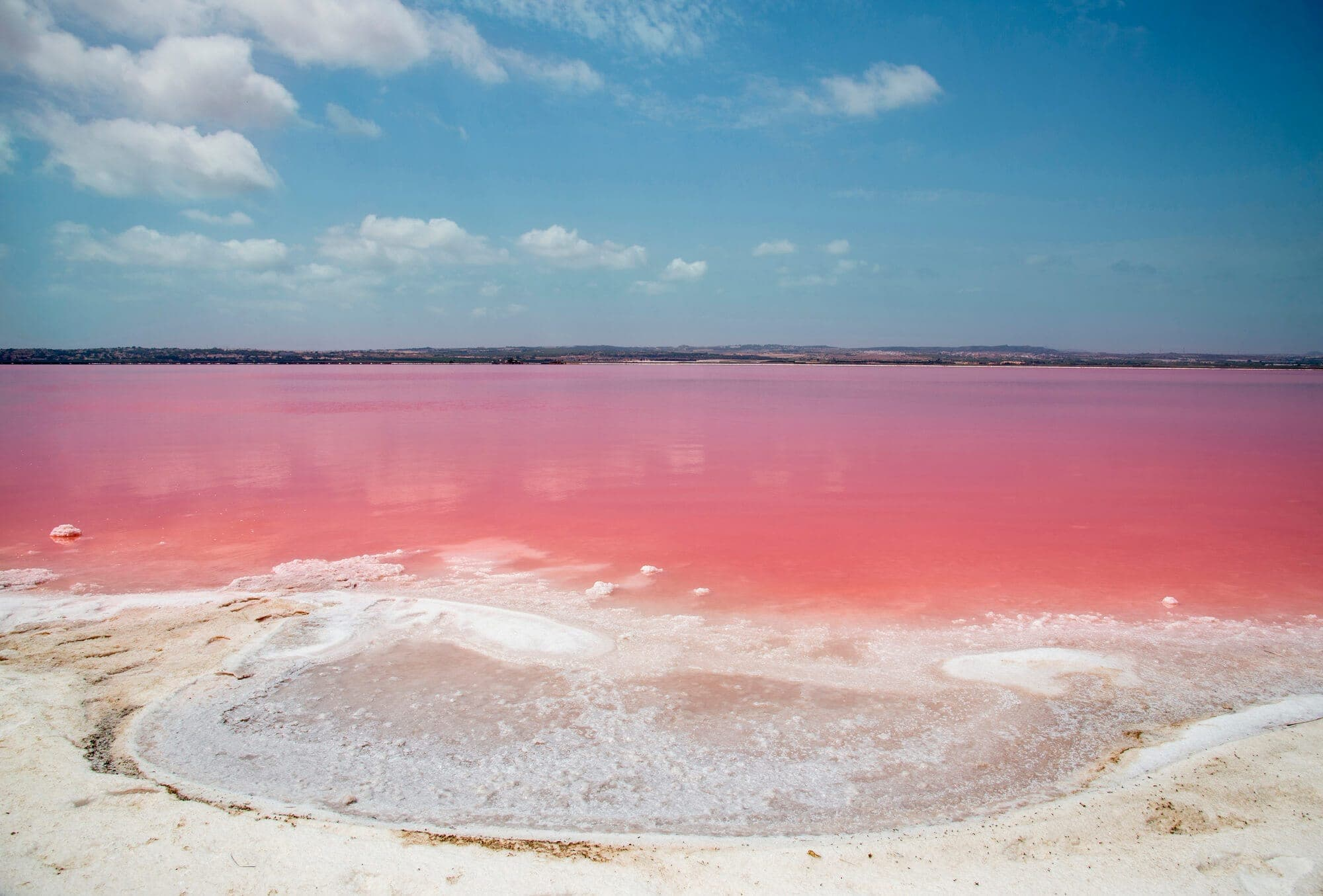 Did you know there's a pink lake in Spain? Discover Laguna Salada de Torrevieja