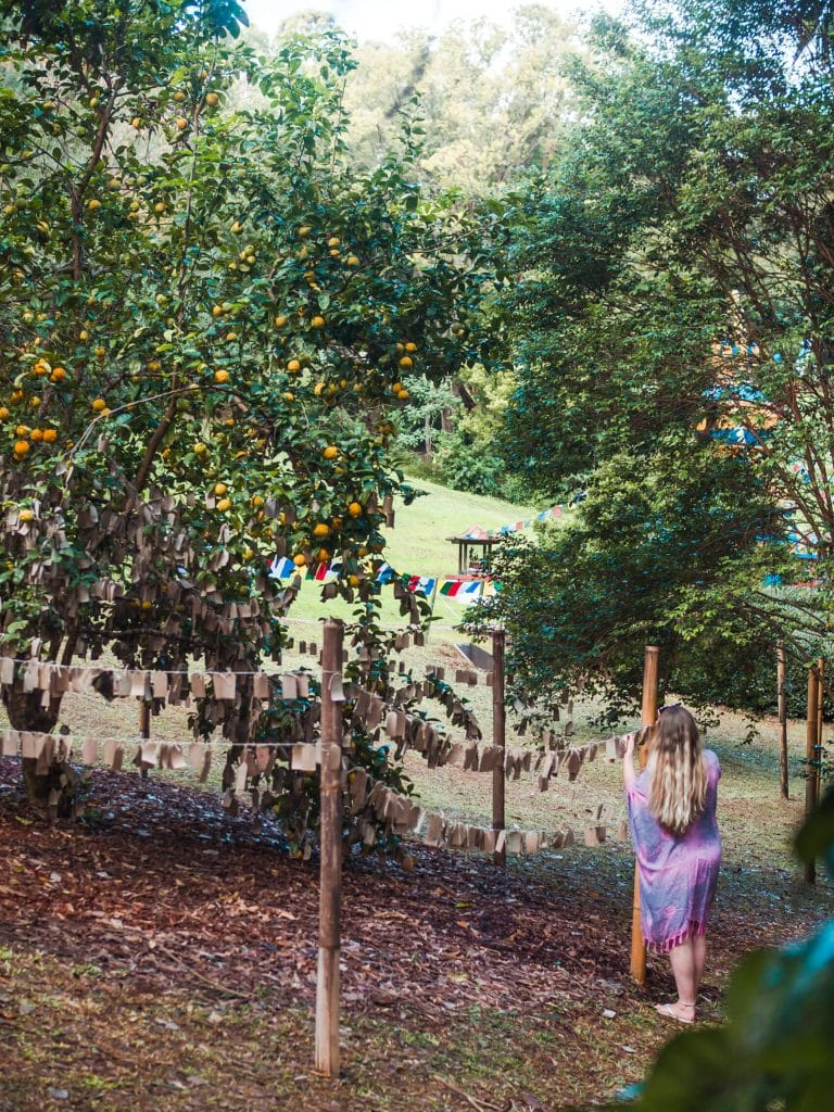 Hanging my wish on the wishing tree at the Crystal Castle outside Byron Bay
