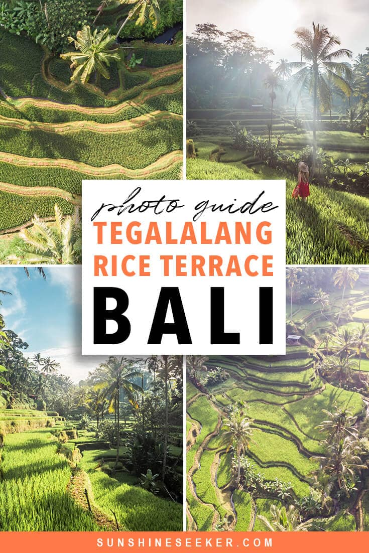 Tegalalang Rice Terrace photography guide. Everything you need to know before you go. Where to find the Instafamous sunrise photo location in Ubud, Bali #tegalalang #ubud #bali #bucketlist #travelinspo