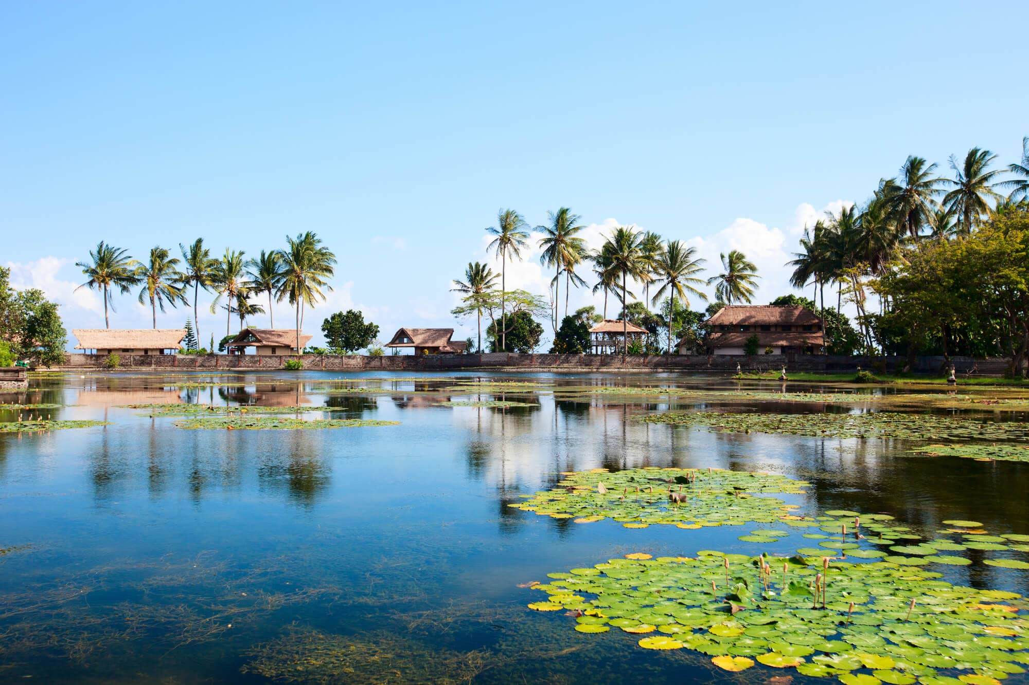 The beautiful Lotus Lagoon in Candidasa - One of the places you can't miss in East Bali